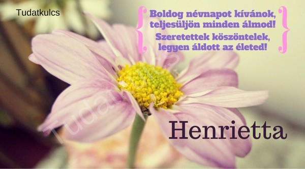 boldog névnapot henrietta BOLDOG NÉVNAPOT! – TUDATKULCS boldog névnapot henrietta